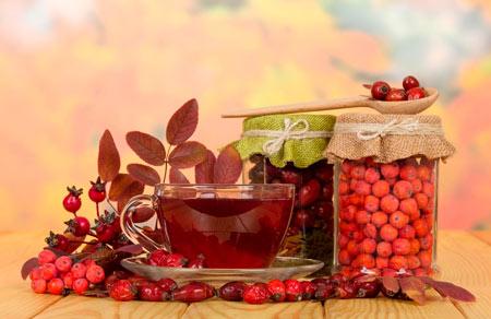 Чай из шиповника рецепт и польза